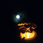 October 2011 Pumpkin